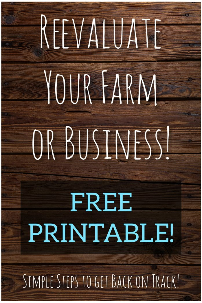 Reevaluate Your Farm or Business: Simple Steps to get back on track! Free Printable!